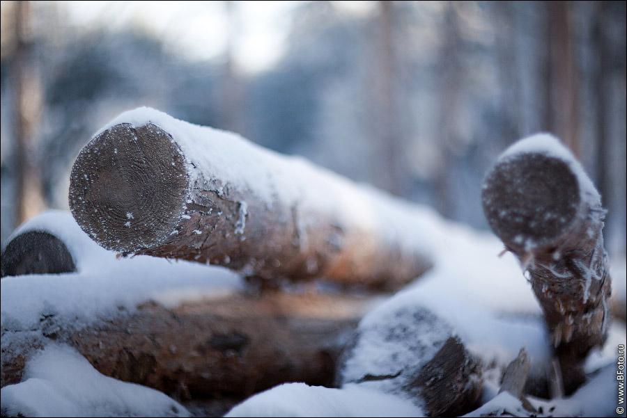 Качества зимы