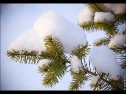 bfoto ru 2532 250x187 Видео ролики про зиму, красота русской зимы