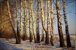 fotobank foto high resolution 2049 250x166 Новые фотографии высокого разрешения, природа, пейзажи