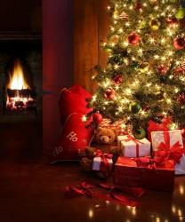 rogdestvo xristovo 2025 208x250 Со Светлым праздником Рождества Христова!