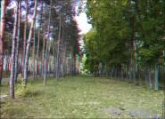 3d foto 2010 185x134 Стереоизображения или 3D фото, анаглифные изображения