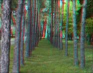 3d foto 2012 185x146 Стереоизображения или 3D фото, анаглифные изображения
