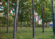 3d foto 2014 185x133 Добавлены новые 3d стерео фото