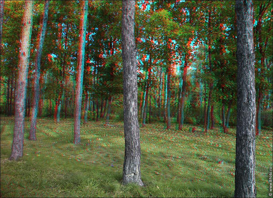 Стереоизображения или 3D фото, анаглифные изображения , фотобанк ...