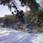3d foto anaglif 12 150x150 Стереоизображения или 3D фото, анаглифные изображения