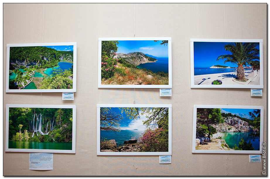 Выставка фотографий 2010 – Как прекрасен этот мир