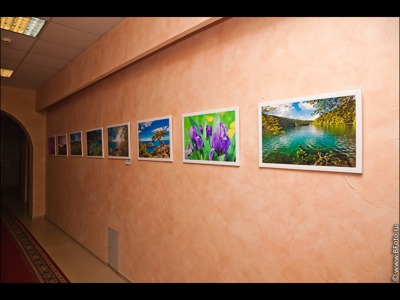 IMG 2515 Фотовыставка фотографий фотохудожника Алексея Строганова в Областном Дворцы Культуры