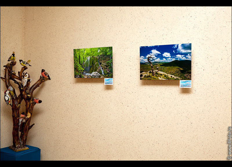 IMG 2802 Фотовыставка фотографий фотохудожника Алексея Строганова в Областном Дворцы Культуры