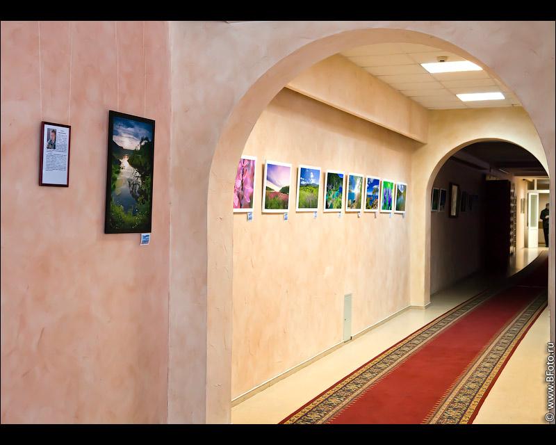 Фотовыставка 2011