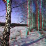 IMG 3153 150x150 Стереоизображения или 3D фото, анаглифные изображения
