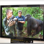 IMG 8099 150x150 Выставка фотографий Золотая черепаха 2011 фотоотчет