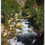 cactus algar spain 10 150x150 Водопады Испании Альгара и Ботанический сад «Кактусы Альгара»