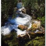 cactus algar spain 14 150x150 Водопады Испании Альгара и Ботанический сад «Кактусы Альгара»