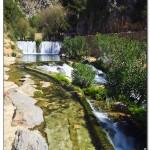 cactus algar spain 15 150x150 Водопады Испании Альгара и Ботанический сад «Кактусы Альгара»