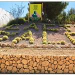 cactus algar spain 18 150x150 Водопады Испании Альгара и Ботанический сад «Кактусы Альгара»
