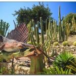 cactus algar spain 22 150x150 Водопады Испании Альгара и Ботанический сад «Кактусы Альгара»