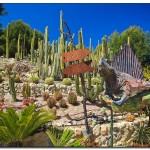 cactus algar spain 23 150x150 Водопады Испании Альгара и Ботанический сад «Кактусы Альгара»
