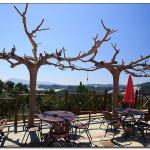 cactus algar spain 24 150x150 Водопады Испании Альгара и Ботанический сад «Кактусы Альгара»