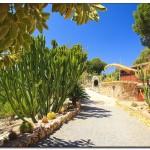 cactus algar spain 27 150x150 Водопады Испании Альгара и Ботанический сад «Кактусы Альгара»