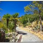 cactus algar spain 31 150x150 Водопады Испании Альгара и Ботанический сад «Кактусы Альгара»