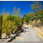 cactus algar spain 32 150x150 Водопады Испании Альгара и Ботанический сад «Кактусы Альгара»