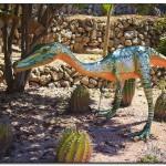 cactus algar spain 36 150x150 Водопады Испании Альгара и Ботанический сад «Кактусы Альгара»