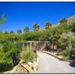 cactus algar spain 38 150x150 Водопады Испании Альгара и Ботанический сад «Кактусы Альгара»