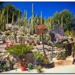cactus algar spain 7 150x150 Водопады Испании Альгара и Ботанический сад «Кактусы Альгара»