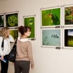 f02 150x150 Победа в фотоконкурсе 2012 Краски природы Государственный Дарвиновский музей