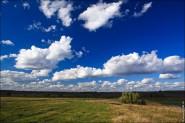 fotobank bfoto 185x123 Скачать бесплатно фото высокого разрешения природа лето