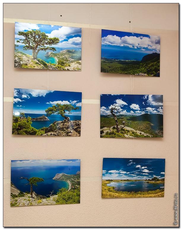 fotovistavka 2 Фотовыставка 2010, выставка фотографий фотографа Алексея Строганова