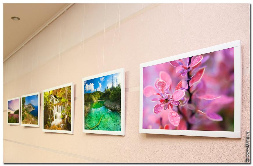 fotovistavka 5 Фотовыставка 2010, выставка фотографий фотографа Алексея Строганова