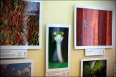 img 7626 165x110 В Липецке открылся фестиваль природной фотографии и 4 выставки