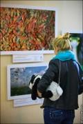 img 7650 120x180 В Липецке открылся фестиваль природной фотографии и 4 выставки