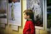img 7657 165x110 В Липецке открылся фестиваль природной фотографии и 4 выставки