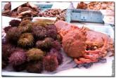mercado central spain 2002 165x111 Продуктовый рынок в Испании, мясо, морепродукты и фрукты в Аликанте