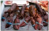 mercado central spain 2003 165x106 Продуктовый рынок в Испании, мясо, морепродукты и фрукты в Аликанте