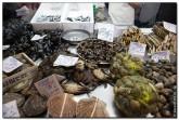 mercado central spain 2015 165x111 Продуктовый рынок в Испании, мясо, морепродукты и фрукты в Аликанте