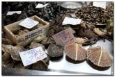 mercado central spain 2017 165x111 Продуктовый рынок в Испании, мясо, морепродукты и фрукты в Аликанте