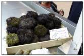 mercado central spain 2024 165x111 Продуктовый рынок в Испании, мясо, морепродукты и фрукты в Аликанте