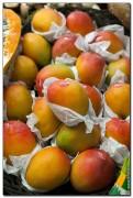 mercado central spain 2036 121x180 Продуктовый рынок в Испании, мясо, морепродукты и фрукты в Аликанте