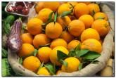mercado central spain 2051 165x111 Продуктовый рынок в Испании, мясо, морепродукты и фрукты в Аликанте