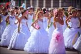 nevesty 2014 165x110 Сбежавшие невесты в Липецке 2012 фото и видео