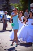 nevesty 2023 116x180 Сбежавшие невесты в Липецке 2012 фото и видео