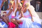 nevesty 2088 165x111 Сбежавшие невесты в Липецке 2012 фото и видео