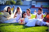 nevesty 2248 165x110 Сбежавшие невесты в Липецке 2012 фото и видео
