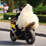 parad nevest 102 150x150 Сбежавшие невесты 2011 Липецк, парад невест