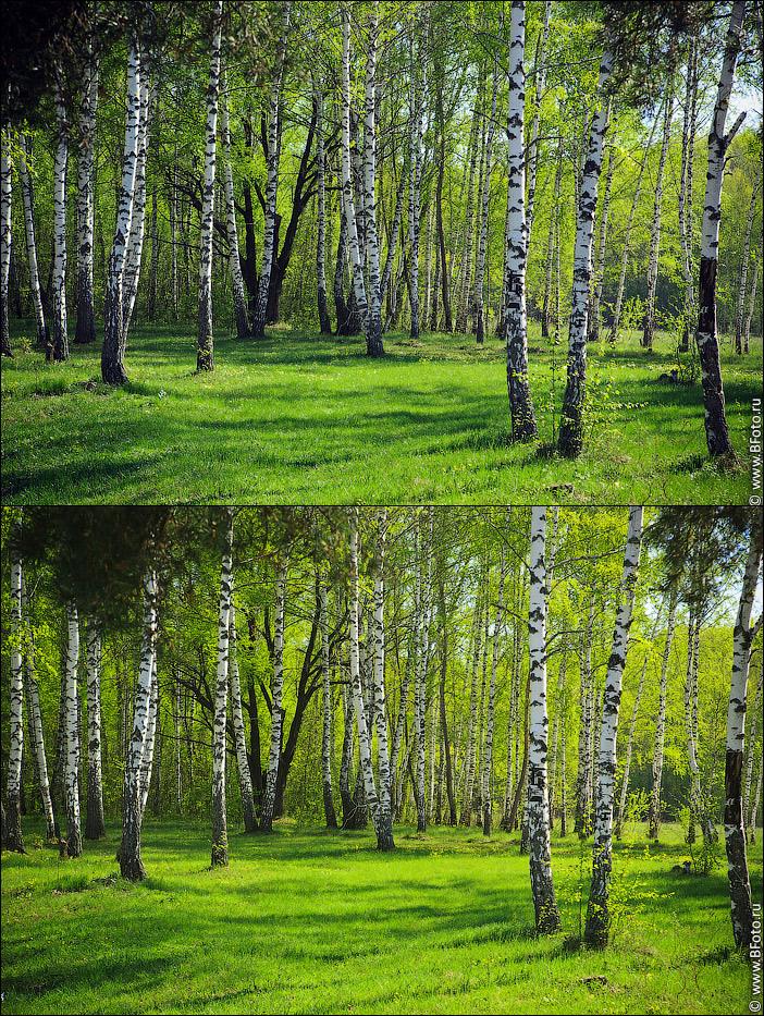 polaric Поляризационный фильтр при фото и видео съемке пейзажа