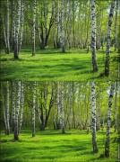 polarizing filter1 134x180 Фото мастерская, было   стало, примеры фотографий