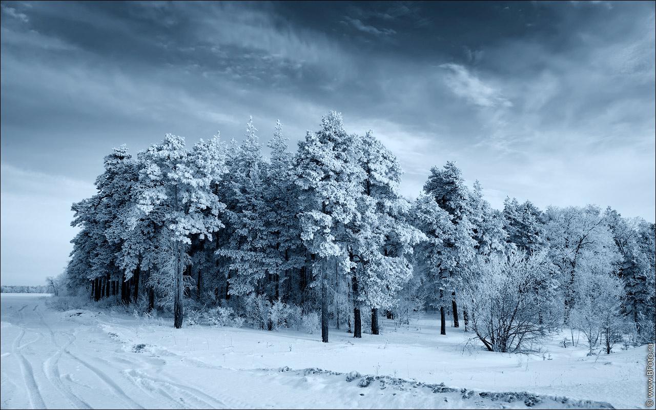 Обои зима пейзаж природа 1280x800 скачать